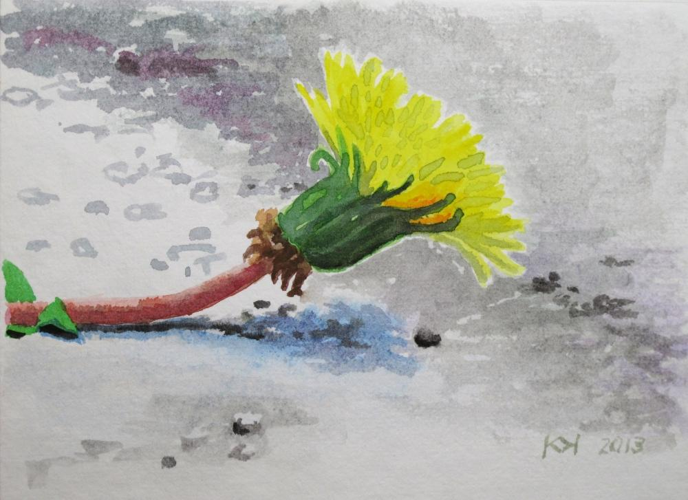 painting in watercolor entitled Löwenzahnblüte, liegend